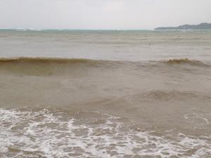 シケシケの海