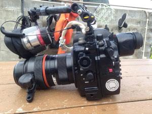ゲストさんのカメラ