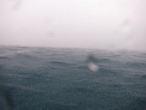 大雨・・・
